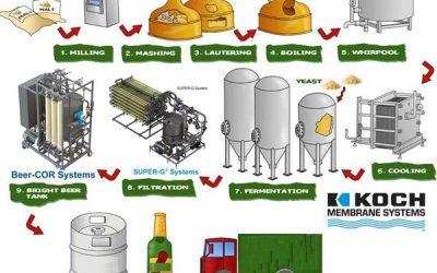 Quy trình, công nghệ sản xuất Bia