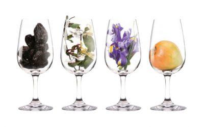 Các hương vị cơ bản của rượu vang