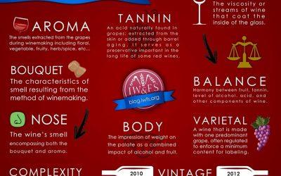 Các thuật ngữ cơ bản về rượu vang – Phần 2 (Hết)