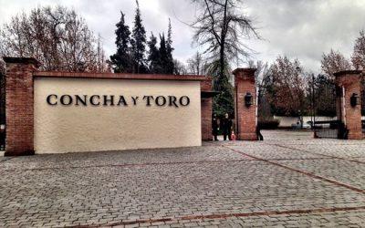 Concha Y Toro – Chile