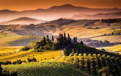 Vùng nho Tuscany – Ý
